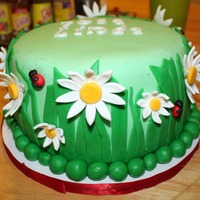 Daisies And Ladybugs My inspiration came from here on CC. Thank you. Cake is dark chocolate with turtle filling (fudge, caramel, and pecans). Covered and...