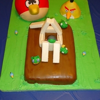 Angry Birds The cake is covered in fondant. The yellow bird is a gluten free cake and the boards that the birds smash into are gluten free cookies for...