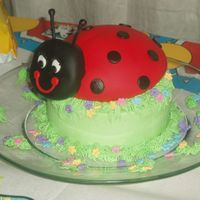 Little Lady Bug for my daughters 3rd b-day. she helped me with the flowers and grass! buttercream bottom cake fondant covered ladybug