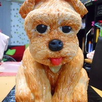 Sculpted Dog Cake