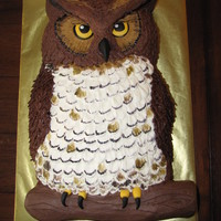 Owl Cake The birthday boy wanted a realistic looking owl cake... so here's what I came up with. Sculpted from two 11x15 sheet cakes, all...