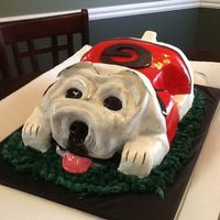 Bulldog Grooms Cake All hand carved. Chocolate cake w chocolate ganach filling covered in white chocolate fondant