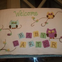 Baby Owl Baby Shower Cake 1/2 sheet cake with buttercream icing