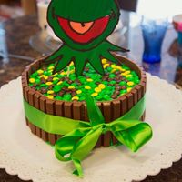 Kermit Candy Birthday Cake Kermit the frog Birthday cake