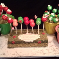 Happy 2Nd Birthday, Finley! Dairy-free pound cake and buttercream icing cake pops for Finley's 2nd Birthday. The cake pops were arranged to represent a...