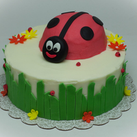 Lady Bug Birthday Inspired by subaru here on CC. Buttercream frosted with MMF accents.