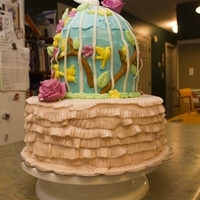 Birdcage Shower Cake WASC base, Chocolate and Strawberry tiers in birdcage, SMBC and MMF.