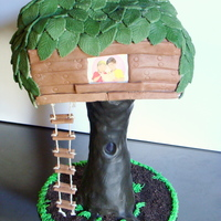 The Magic Treehouse  My son loves the Magic Treehouse books, so it was a no brainer what birthday cake to make for him. The tree trunk is a vase covered in...