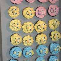 Vbs Animal Cupcakes *