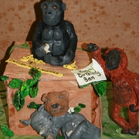 Jungle Crate Birthday Cake