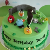 Angry Birds Competition Entry