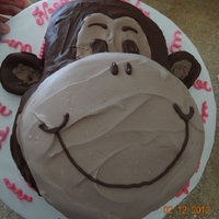 Monkey Covered in hard chocolate! haha.