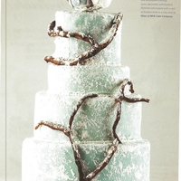 Love Birds This is our second cake published in a wedding magazine. :) Our task was to do something wintery and of course I did not want it to be...