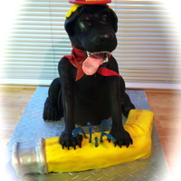 Fire Dog Cake   This mischievous black lab puppy has had his fun chewing on the fire hose. Made for the local explorer program for the fire department.