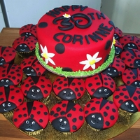 Lady Bugs Galore Small chocolate mud cake covered in fondant; cupcakes are made with the DH vanilla cake mix (first try of this one) covered in fondant....