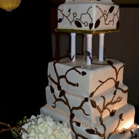 Elegant Branches This was my largest and best cake so far! The top 3 tiers are different flavors of cheesecakes. The bottom tier is a White cake with fresh...
