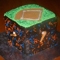T-Ball Cake This cake was baked for a T-Ball end of season party. The cake is alternating vanilla and chococlate with whipped blueberry filling. The...