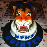 Tiger Graduation/Tiger for football player