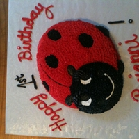 Pretty Ladybug   I made this lady bug using Wilton cake pan.