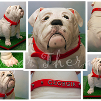 Georgia Bulldog Cake This Is 100 Cake Minus The Stand With Modeling Chocolate Front And Back Paws Cake Is Covered In Modeling Chocola Georgia Bulldog cake. This is 100% cake (minus the stand) with modeling chocolate front and back paws. Cake is covered in modeling...