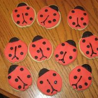 Lady Bug Cookies   These are sugar cookies with rolled fondant icing