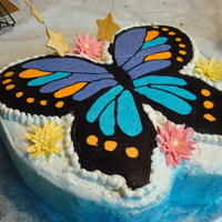 Butterfly Cake   frozen buttercream transfer .this was the firdt time i did this and was very happy with outcome