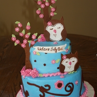 Owls Someone sent this picture to me off line.. i loved it!! Fun cake to make.