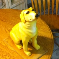 Yellow Lab The Head and legs are made with modeling chocolate. The body is cake. The Lab is covered in fondant and then sprayed. It was a fun cake to...