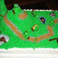 "Over The Hill Cake Made this for a gentleman that breeds snake and turtles. He was turning 40 so the wife wanted me to have a ""Over the Hill""..."
