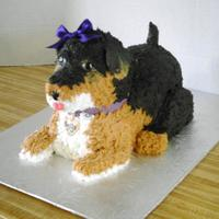 Bella The Yorkie Poo  My first BIG disaster... I made the entire thing out of cake. Approximately 9 wide x 12 inches long x 6 inches tall. Supports under nose,...
