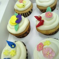 Spring Bird Cupcakes Cupcakes for my friend's birthday. We went on a bir watching tour the other day an it was fascinating. White Choco IMBC, royal icing...