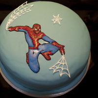 Carson's B-Day Cake Spiderman redone directly on the cake hours before delivery!