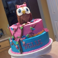 Owl Cake 12 and 10 inch cakes with rkt owl covered in fondant.