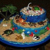 "Sea Side Cake Covered With Buttercream The Sand Is Crushed Wafers ""SEA SIDE CAKE""COVERED WITH BUTTERCREAMthe sand is crushed wafers"