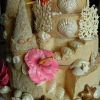 Sandcastle Details Round Wedding cakesSugar Paste Hibiscus Molded White Chocolate Shells and CoralCaramel Buttercream covered in raw sugar and ground cookies...