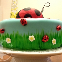 Ladybug Cake - Side View Fondant-covered ladybug birthday cake. Covered with hand painted fondant and decorated with fondant ladybugs and flowers.