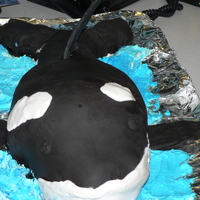 Orca An 1st attempt with to make an Orca cake for a wonderful person who goes out to watch whales