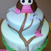 Pretty Owl   Fondant covered tiered cake with rkt owl covered in fondant and gumpaste butterflies.