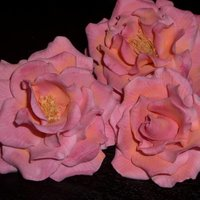 Rose I tried making roses after watching Edna's (tonedna ) dvd.The dvd is awesoem ,it explains each and every step of makinga rose. Thanks...
