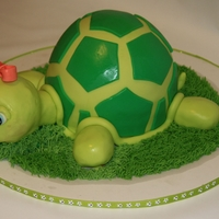 "Turtle Cake Turtle Cake I made for my sister's birthday. For the shell I used one half of the Wilton sport's ball pan and a 6"" round pan..."
