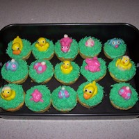 Easter Critter Cupcakes i used marshmallow fondant to sculpt these little guys and put them on cupcakes
