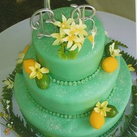 Lemon And Lime Theme Wedding Cake Tiered wedding cake covered in mint colored fondant. Decorated with lemons and limes. Interesting theme and colors but I was happy with the...