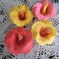 First Attempt At Hibiscus Flowers My first attempt at gumpaste hibiscus flowers.