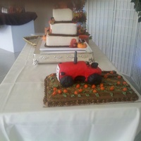 Groom's Tractor Cake red tractor cake