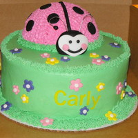 Ladybug chocolate 2 layer with buttercream and fondant details