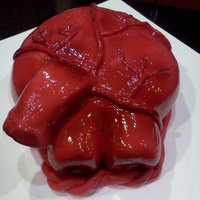 "Anatomical Heart  This was done for a biology class. I must give credit and thanks to the owner of ""Almost Anything Cakes"", I saw this on Flicker..."