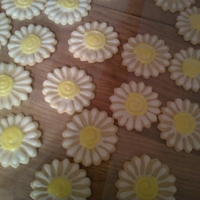 Daisy Cookies Pretty Flower cookies...too bad they didn't try completely before I stacked them... :o(