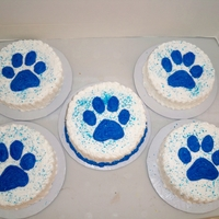 Paw Print Cakes   Paw print, 6 in cakes