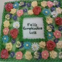 Luz's Birthday Cake