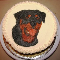 Rottie Gluten free cake, Painted with buttercream